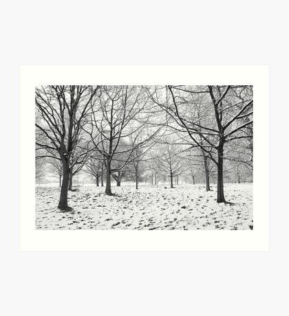 Regents Park Art Print