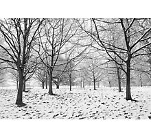 Regents Park Photographic Print