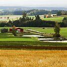 Germany in the Fall by JulieDanielle