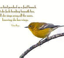 Be as a bird perched on a frail branch . . . by Bonnie T.  Barry