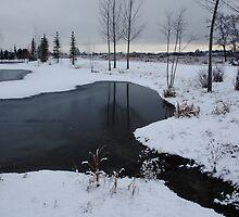 Wonderland of winter lakes ! by Sharon Hagler