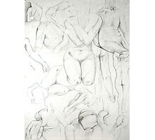 Various Life Drawings in Pencil Photographic Print