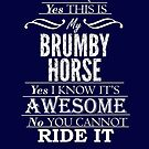 This is my Brumby Horse ~ Light Version by Laura Sykes