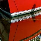 Red Reflections  by Monte Morton