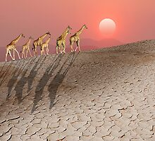 DAMARALAND SUNSET WITH GIRAFFES by Michael Sheridan