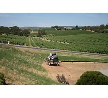 Miles and Miles from Maxwells Mead, McLaren Vale Photographic Print