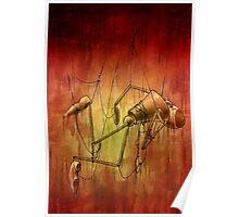 Tangled Misery Poster