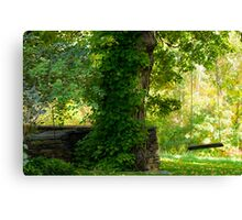 Remembering Childhood Canvas Print