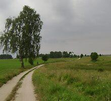 an unbelievable Poland landscape by beautifulscenes