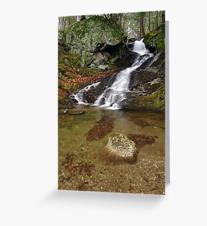 Small Mountain Stream - Vermont  Greeting Card
