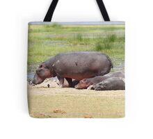 Hippopotamus, Kenya  Tote Bag