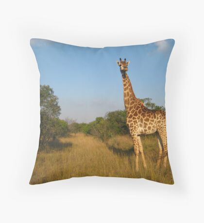 Live Free - South Africa Throw Pillow