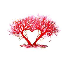 Heart of a Tree by Linda Callaghan