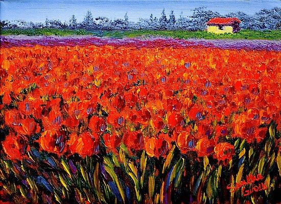 Holland Tulip Field by sesillie