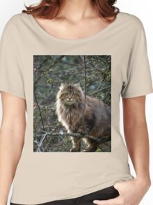 Maine Coon Tabby Cat Women's Relaxed Fit T-Shirt