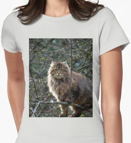 Maine Coon Tabby Cat Womens Fitted T-Shirt