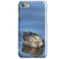Pacific Black Ducks Resting iPhone Case/Skin