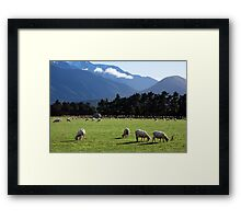 a beautiful New Zealand landscape Framed Print