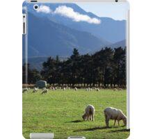 a beautiful New Zealand landscape iPad Case/Skin