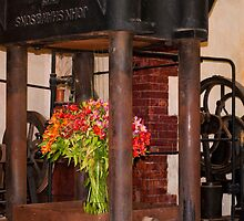 Flower Press by Werner Padarin
