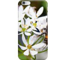 "Bee on White Allium ""Graceful"" iPhone Case/Skin"