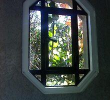 Ivy Covered Window by Anton Rheindeer