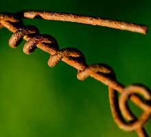 Rusty wire by John Finkelde
