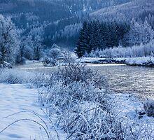 The River Tweed by Lynne Morris