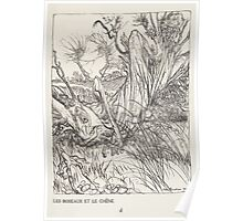 Aesop's Fables art by Arthur Rackham 1913 0054 The Oak and the Reeds Poster