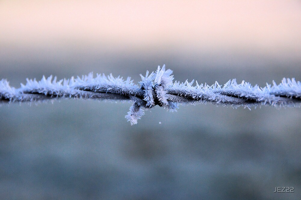 Sharp Frost by JEZ22