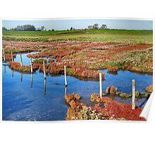 Wetlands 2 Poster