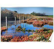 Wetlands 3 Poster