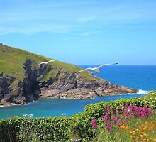 The Beauty Of Cornwall by rumisw