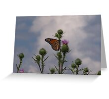 """Butterfly Thistle"" Greeting Card"