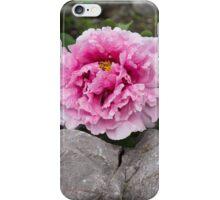 Peony on the Rocks - the Marvels of Spring iPhone Case/Skin