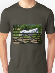 Down a Dorset Lane........ T-Shirt