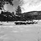 Bear Valley 2 by flyfish70
