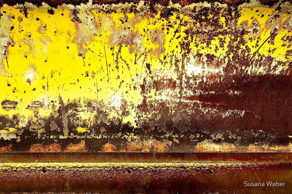 Raging battle by Susana Weber