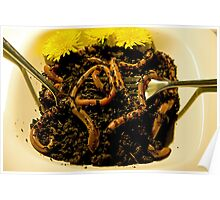 Wormicelli with dirt sauce Poster