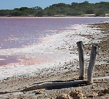 Salt Lake - The Coorong, South Australia by Ruth Durose