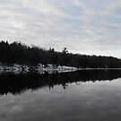 Moria River by Tracy Wazny
