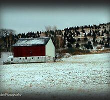 Barn on a Hill by vigor