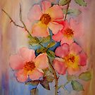climbing roses  by bev langby