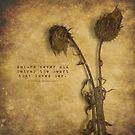 Betray  by Tia Allor-Bailey