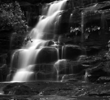 Top Somersby Falls by Tatiana R