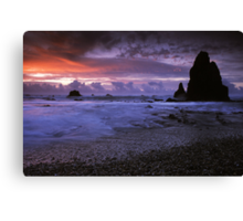 Seal Point, West Coast. Canvas Print
