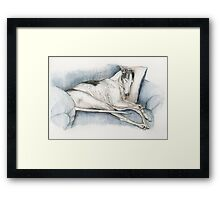Sleeping Greyhound Framed Print