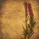 Grains of Sand by Tia Allor-Bailey
