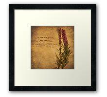 Grains of Sand Framed Print