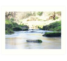 Natures natural beauty  Art Print